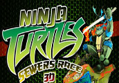 Ninja Turtles Sewers Race